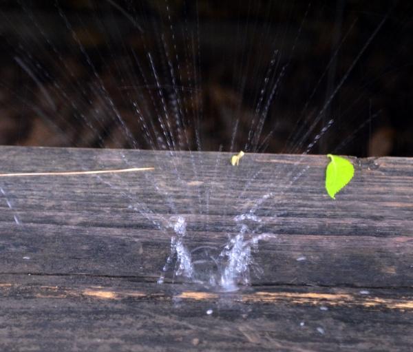 RaindropMay13_002