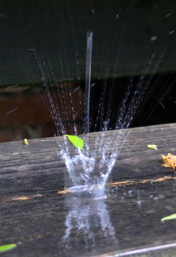 RaindropMay13_004