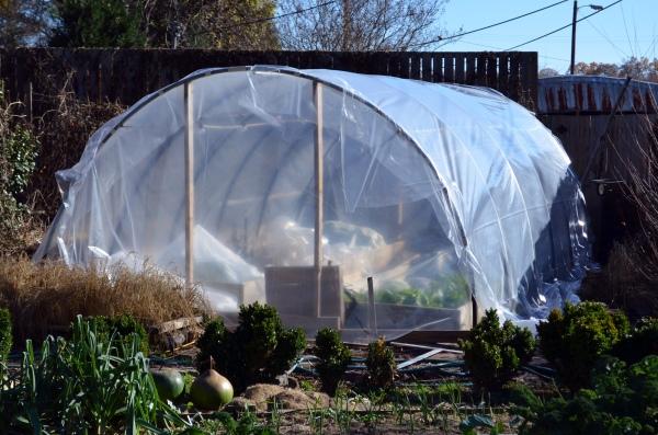 Quick_Greenhouse