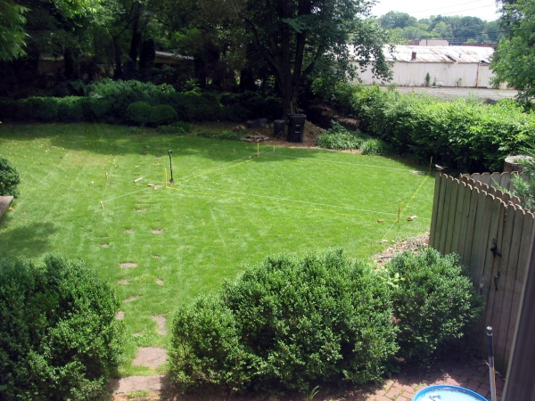 Before:  The old yard, with a garden spot staked out